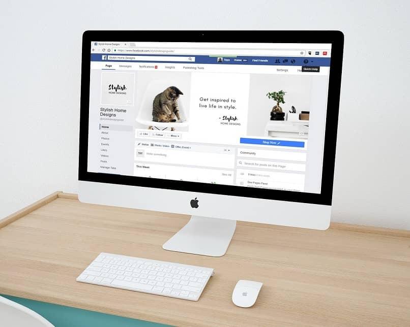 procurando por páginas do facebook