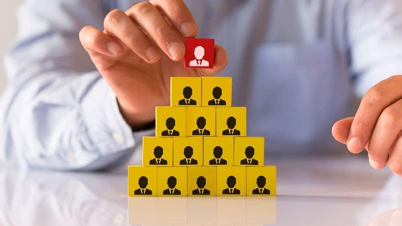 estrutura organizacional vertical