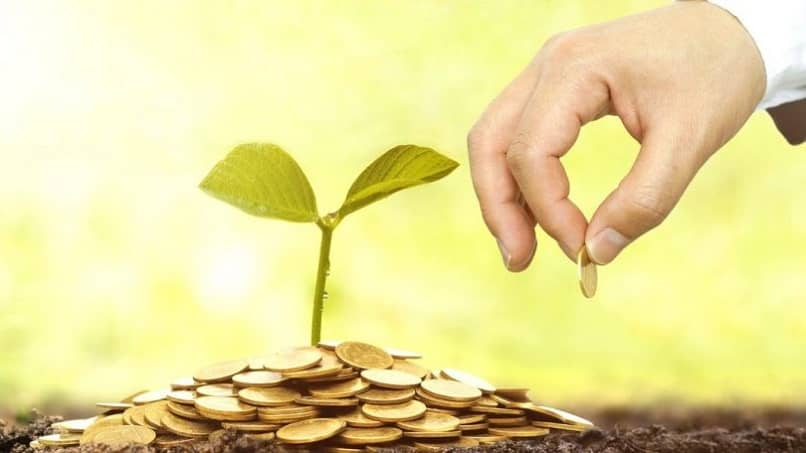 pessoa empresas dão dinheiro para crescer planta ambiente