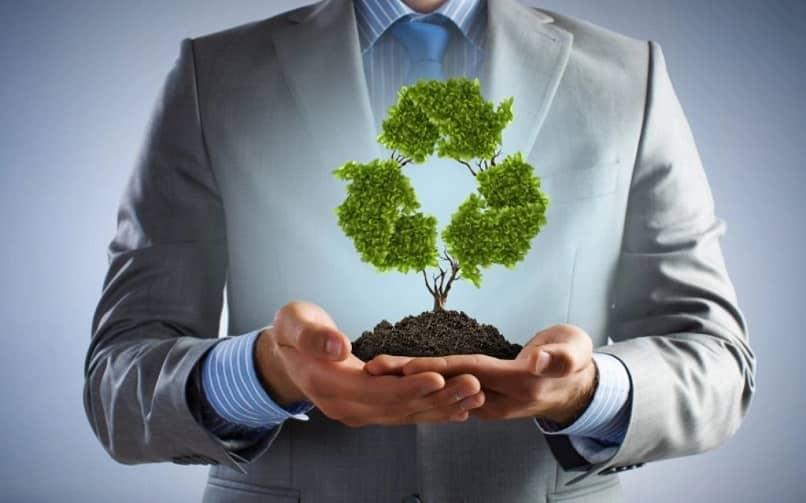 empresa de cuidado ambiental